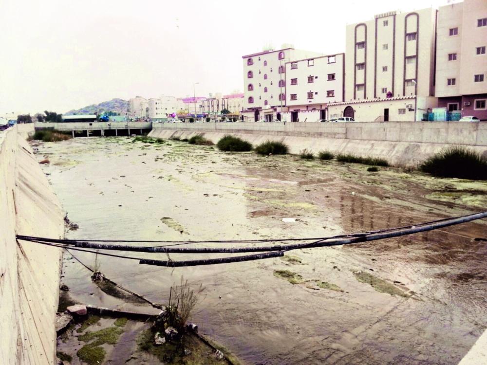 مستنقع الصرف الصحي يصدر لسكان حي القيم الروائح الكريهة والحشرات. (تصوير: عوض المالكي)