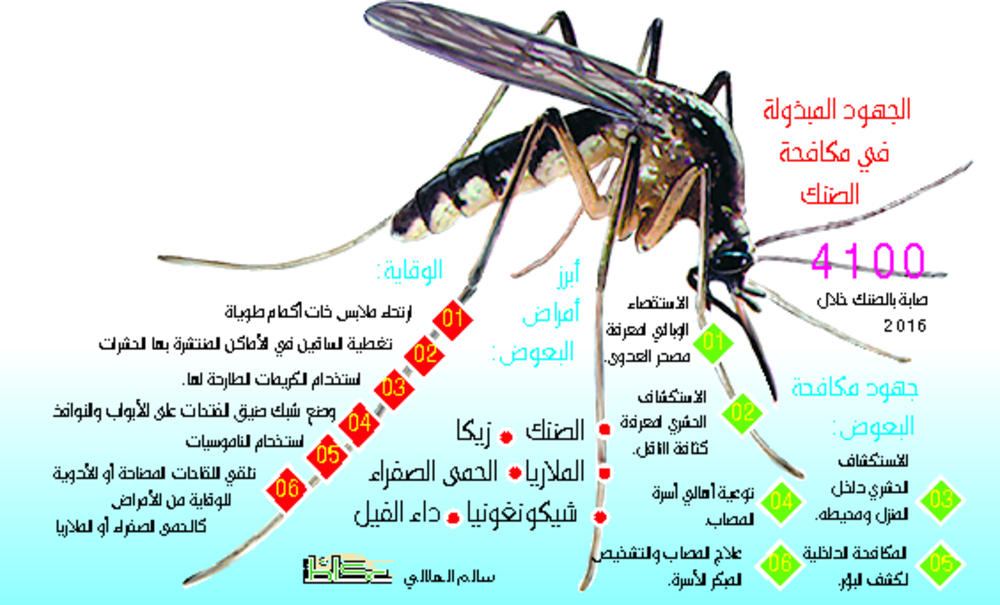 4100 إصابة ضنك التوعية لا تكفي أخبار السعودية صحيفة عكاظ