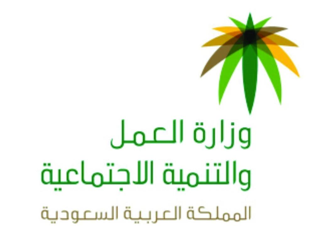 «العمل عن بعد».. توظيف 4500 سعودية و141 ألف وظيفة بعد 3 سنوات