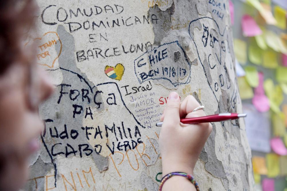 فتاة تخلد ذكرى ضحايا اعتداءات برشلونة على جذع شجرة. (أ. ف. ب)