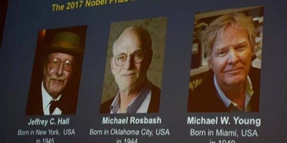 3 علماء أمريكيين يحصدون جائزة نوبل للطب لعام 2017