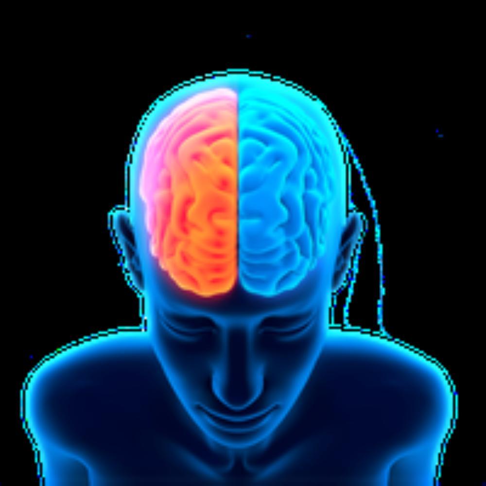 1-2-brain-free-png-image-thumb