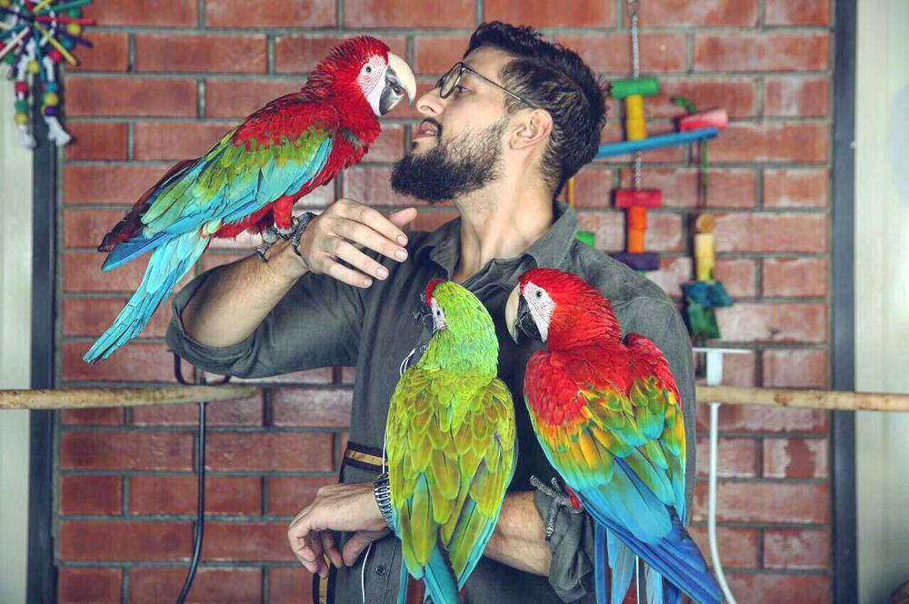 مستقبل الحكيم في تربية الطيور