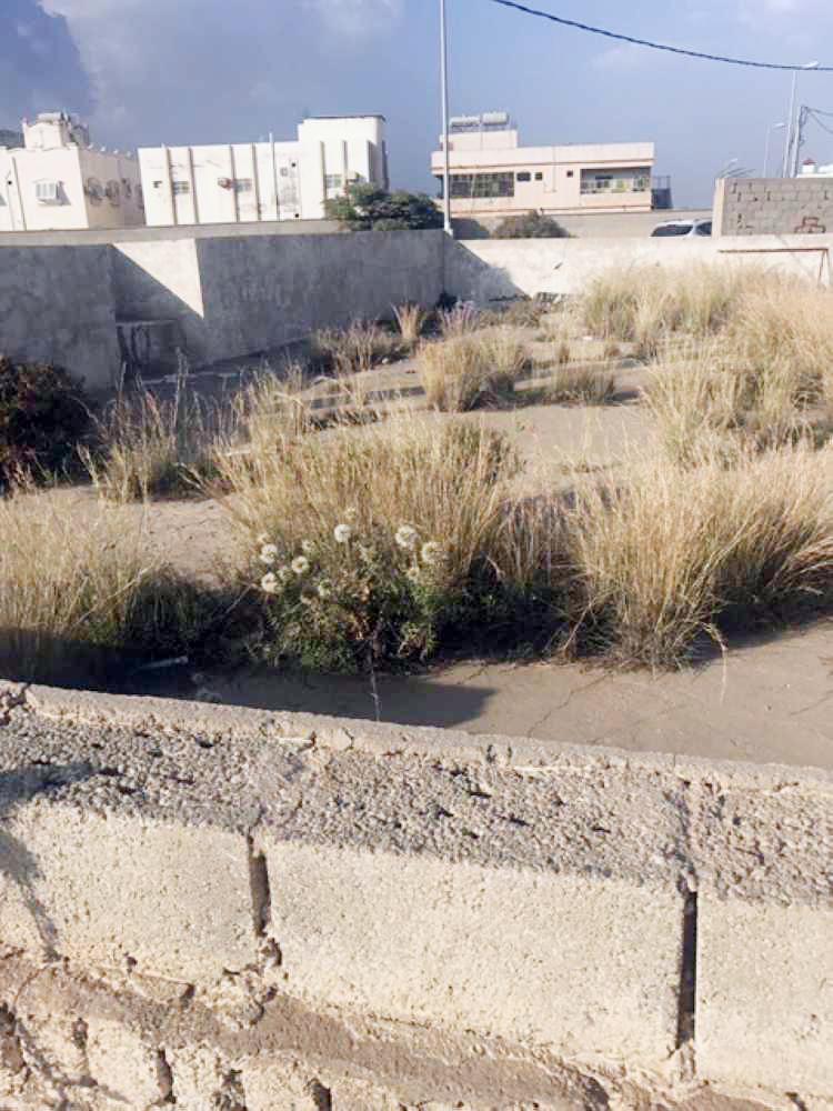 مشهد قرية بشير في الباحة يعاني الإهمال. (عكاظ)