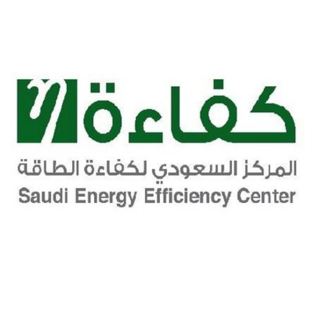 كفاءة الطاقة