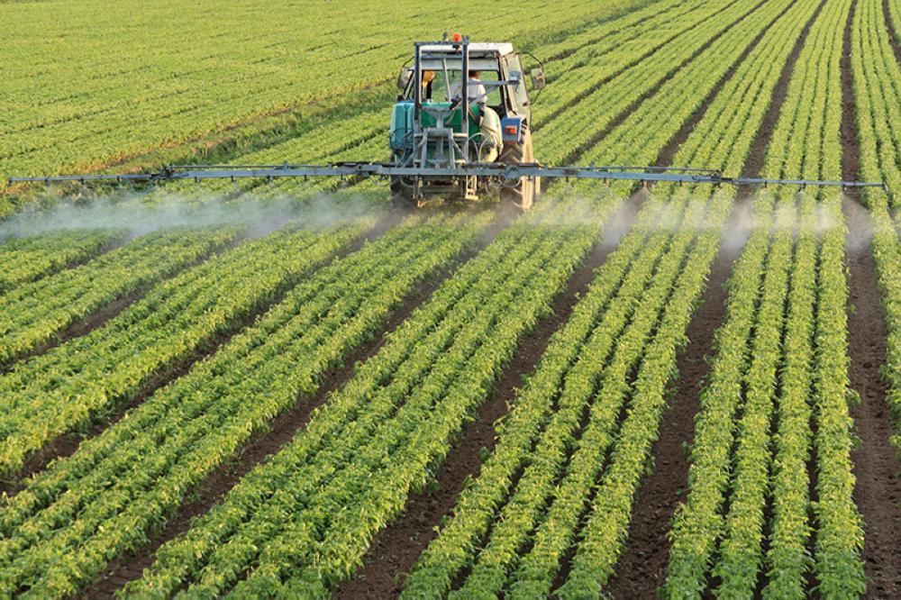 «منظمة الصحة» تحث المزارعين على وقف استخدام المضادات الحيوية