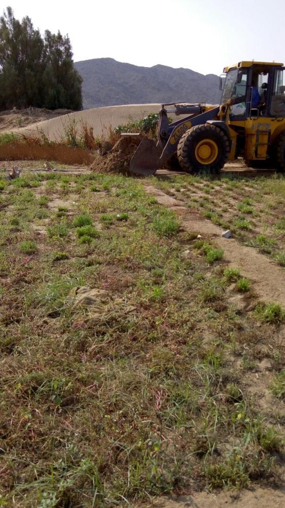 إزالة 3 مزارع مخالفة في مكة المكرمة