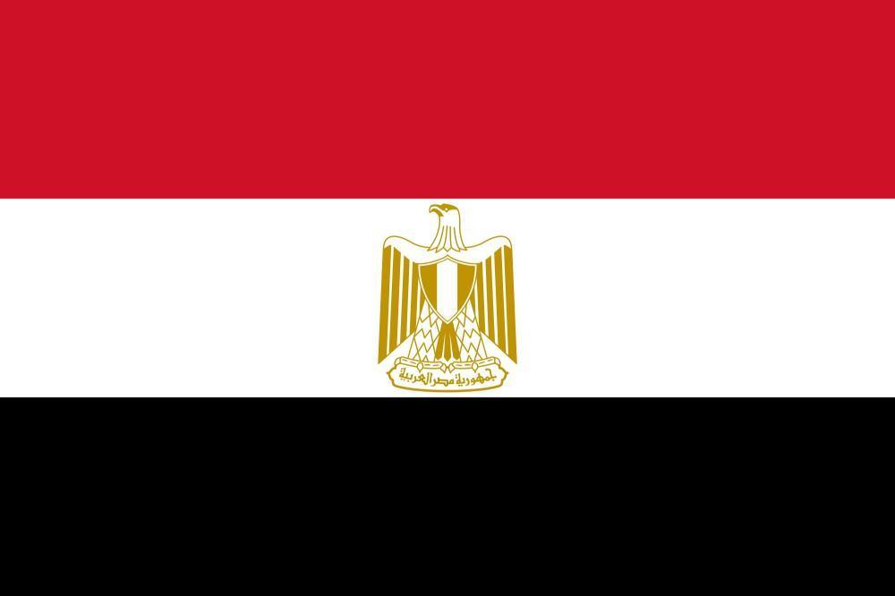 تعرف على تفاصيل «الكشف الطبي» لمرشحي الرئاسة في «مصر»