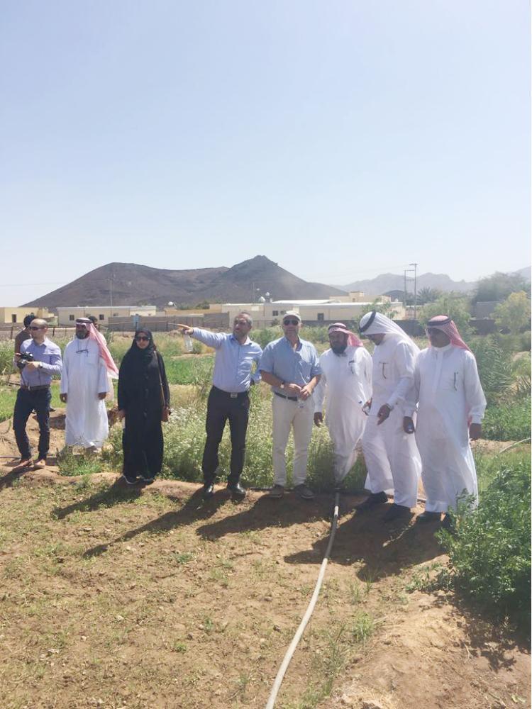 رئيس مركز الشبحة مع وفد جامعة الملك عبدالله لإحدى المزارع. (عكاظ)