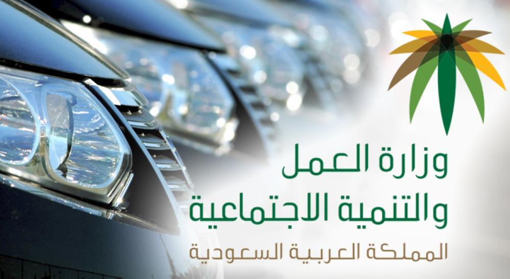 يوم فضح «التستر».. تأجير السيارات يوفر 21 ألف وظيفة
