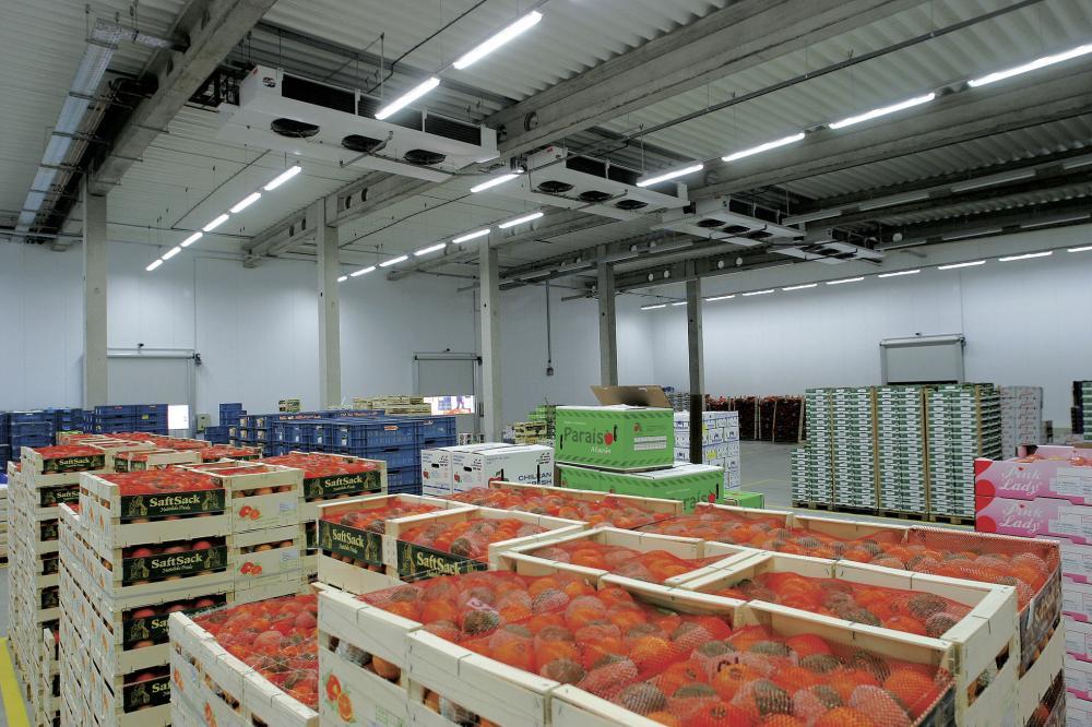 استيراد الخضراوات والفواكه يحافظ على الأسعار ويلبي احتياجات المستهلكين في رمضان.