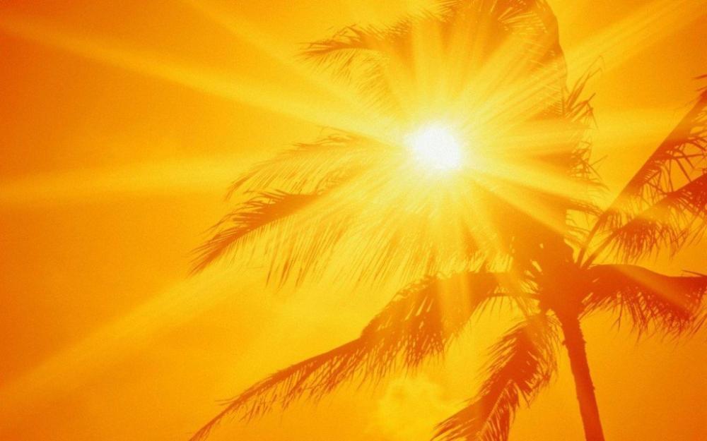 «الأرصاد»: طقس شديد الحرارة على شرق ووسط المملكة