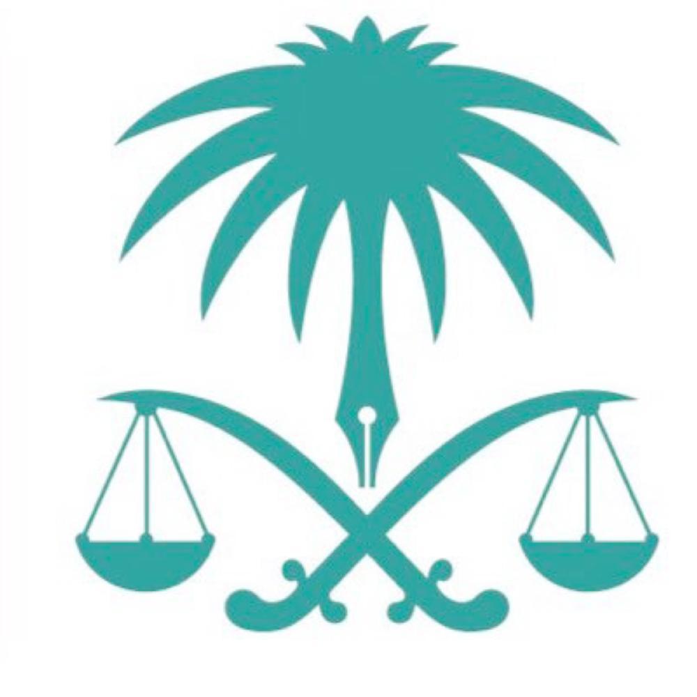 النائب العام: إطلاق سراح «وحيد» أمه.. وتعويضه قيمة إصلاح سيارة