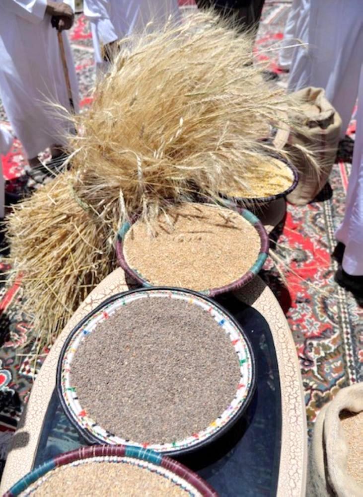 مهرجان البر الأول في بللسمر.