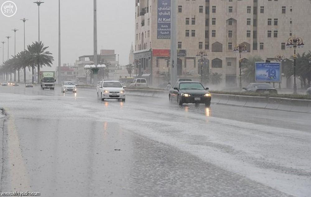 أمطار رعدية على الغربية والجنوبية