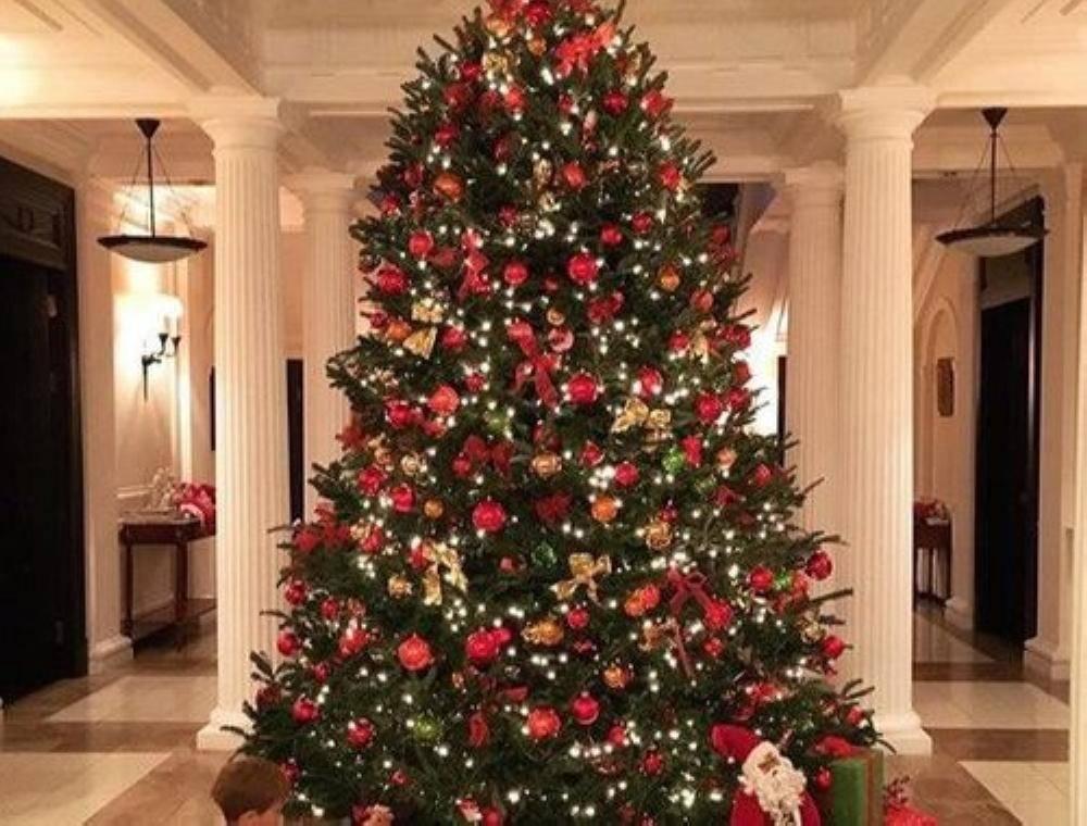 «الجمارك» تؤكد منع استيراد «شجرة الكريسمس» في المملكة