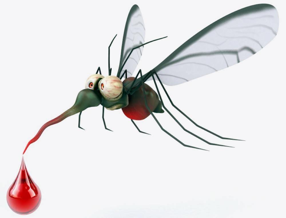 حل «سحري» لمكافحة البعوض ينقذ حياة الملايين