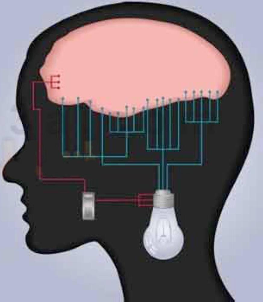 ضعف الذاكرة.. دليل الذكاء