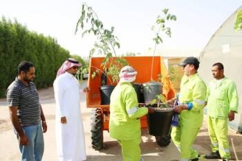 مشروع «تنسيق وزراعة الأشجار والزهور». (عكاظ)