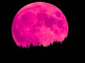 القمر الوردي 2