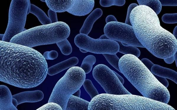 وداعا لفحوصات المختبرات.. جهاز يكتشف البكتيريا