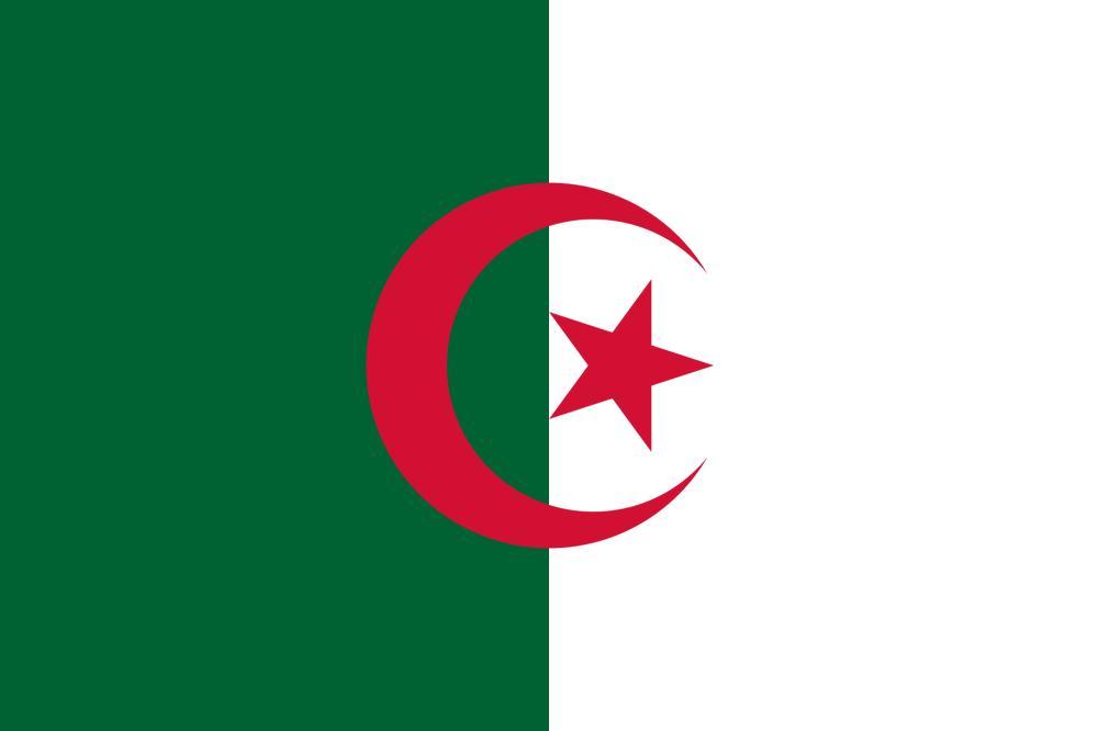 الجزائر تدين بشدة استهداف المليشيات الحوثية لمطار أبها
