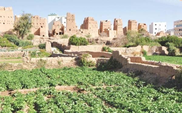 «حسن الوفادة».. أعادت القرى الأثرية لواجهة السياحة في عسير