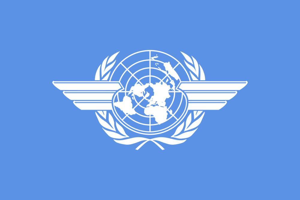 «الإيكاو»: الاعتداء الإرهابي الذي استهدف مطار أبها انتهاك صارخ للقوانين الدولية