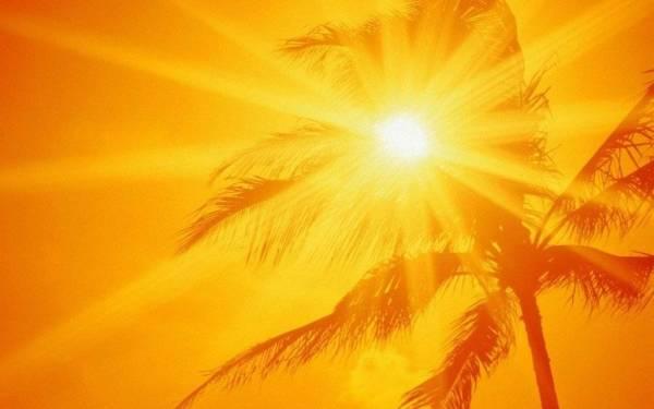 طقس شديد الحرارة على «الشرقية» و«الوسطى»