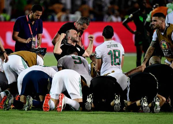 Algeria's coach Djamel Belmadi (C) celebrates with his players following the 2019 Africa Cup of Nations (CAN) Semi-final football match between Algeria and Nigeria at the Cairo International stadium in Cairo on July 14, 2019.  / AFP / JAVIER SORIANO