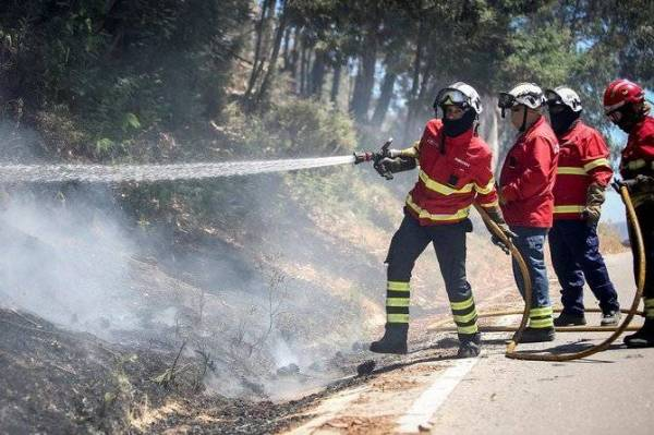 1000 رجل إطفاء يكافحون حرائق الغابات وسط «البرتغال»