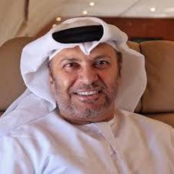 هكذا وصف قرقاش وزير الخارجية القطري حمد بن جاسم