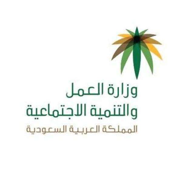 «التأشيرات الفورية مقابل التوطين» خدمة تتيحها وزارة العمل عبر منصة «قوى»