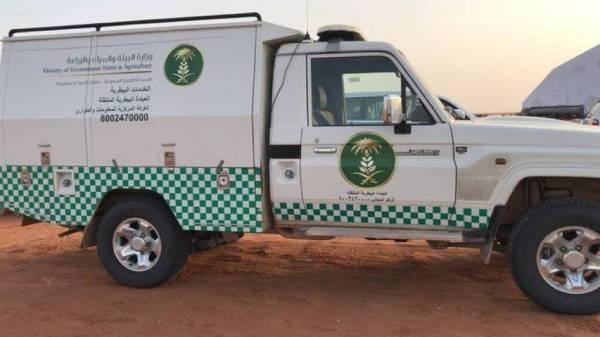 إطلاق ترخيص العربات المتنقلة لخدمة مربي الحيوانات في مناطقهم