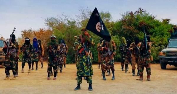 عناصر إرهابية في مالي