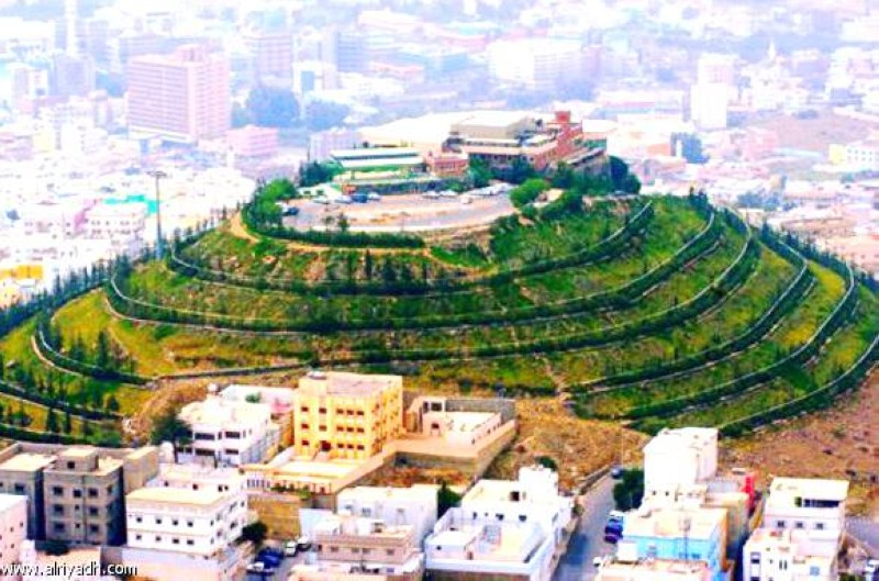 المدينة البهية عروس الجبل أخبار السعودية صحيفة عكاظ