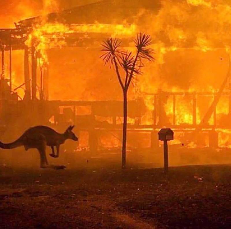 حذرت الملحقية السعودية في أستراليا المبتعثين من حرائق الغابات.