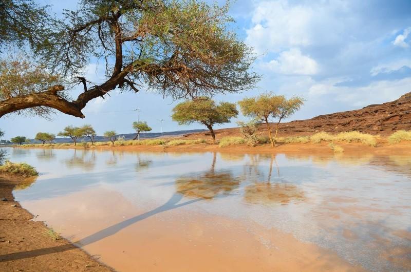 أمطار ورياح نشطة على عدة مناطق