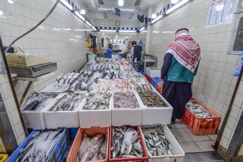 مراقبة الأسماك في إحدى الجولات