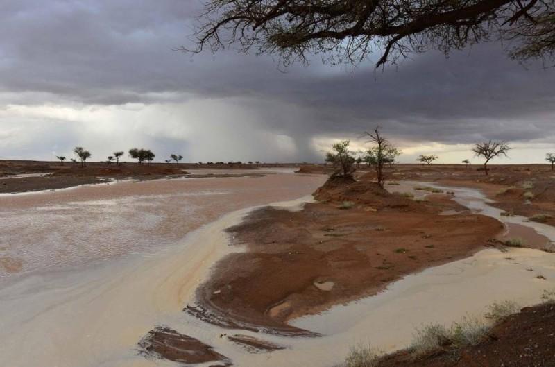 أمطار رعدية على المنطقة الشمالية