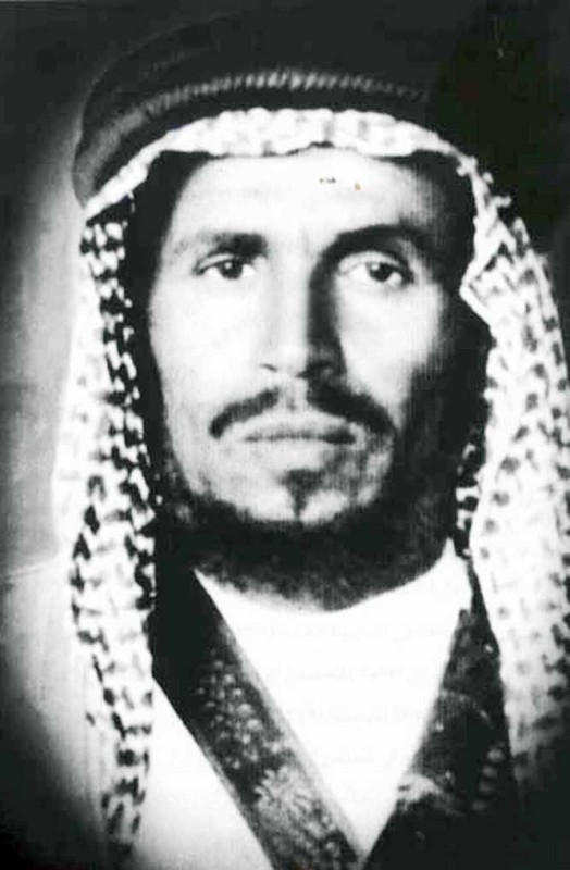 أمير العلا محمد بن إبراهيم بن سلطان