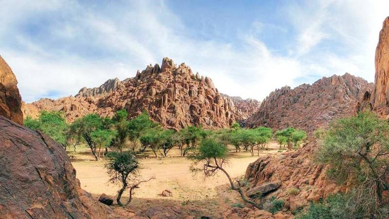 هنا أجا وسلمى الفن الصخري بين الجبال أخبار السعودية صحيفة عكاظ