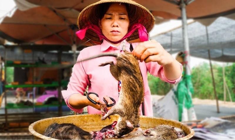 فئران تجهز للطبخ في أحد أسواق الحيوانات الصينية.