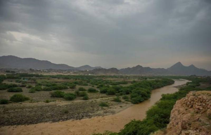 أمطار على عدد من مدن المملكة.
