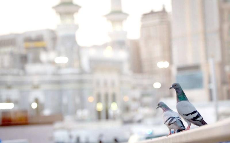 ساحات الحرم خلال صلاة العيد أمس. (تصوير: سامي بوقس)