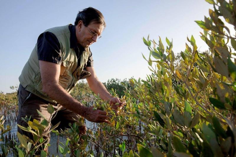 البروفيسور كارلوس دوارتي يجري بعض التجارب على النباتات.