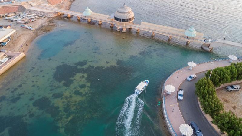 تمتاز وجهات صيف السعودية بمواقع ذات طبيعة ساحرة وتنوع مناخي وعمق تاريخي، ففيها الأودية الخصبة والمناطق الرملية والشواطئ الهادئة والغابات الكثيفة والأجواء الباردة والقرى التاريخية والتراثية. (واس)