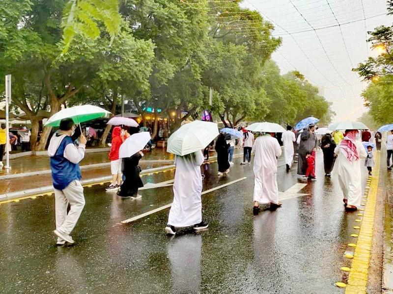 الأمطار واعتدال الطقس يدفعان الأهالي والزوار للتنزه.