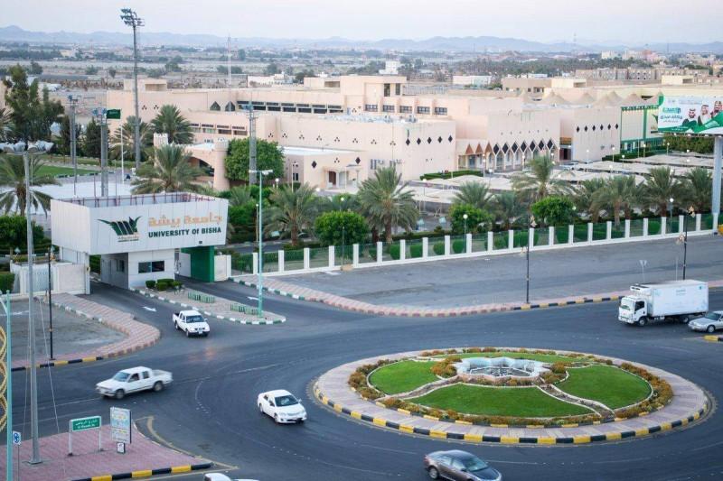 وظائف شاغرة بجامعة بيشة تعرف على الشروط والتخصصات أخبار السعودية صحيفة عكاظ