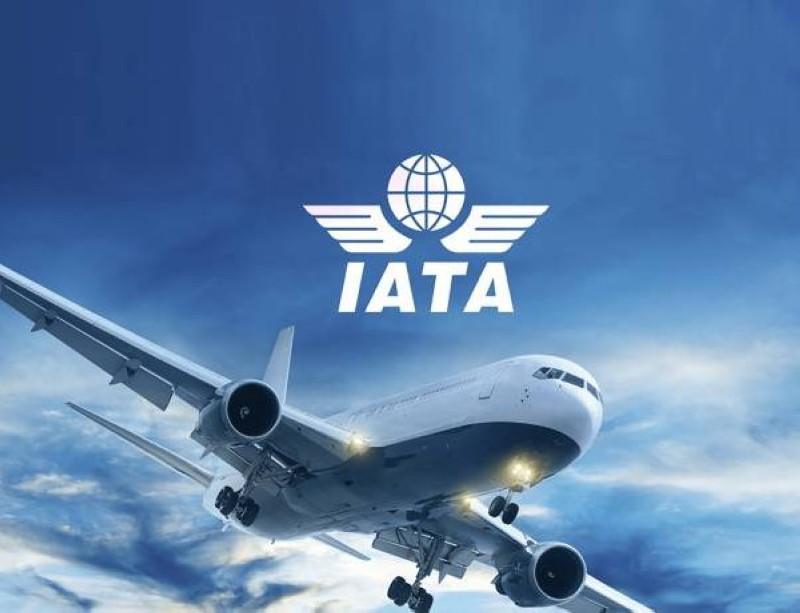 الاتحاد الدولي للنقل الجوي «إياتا».